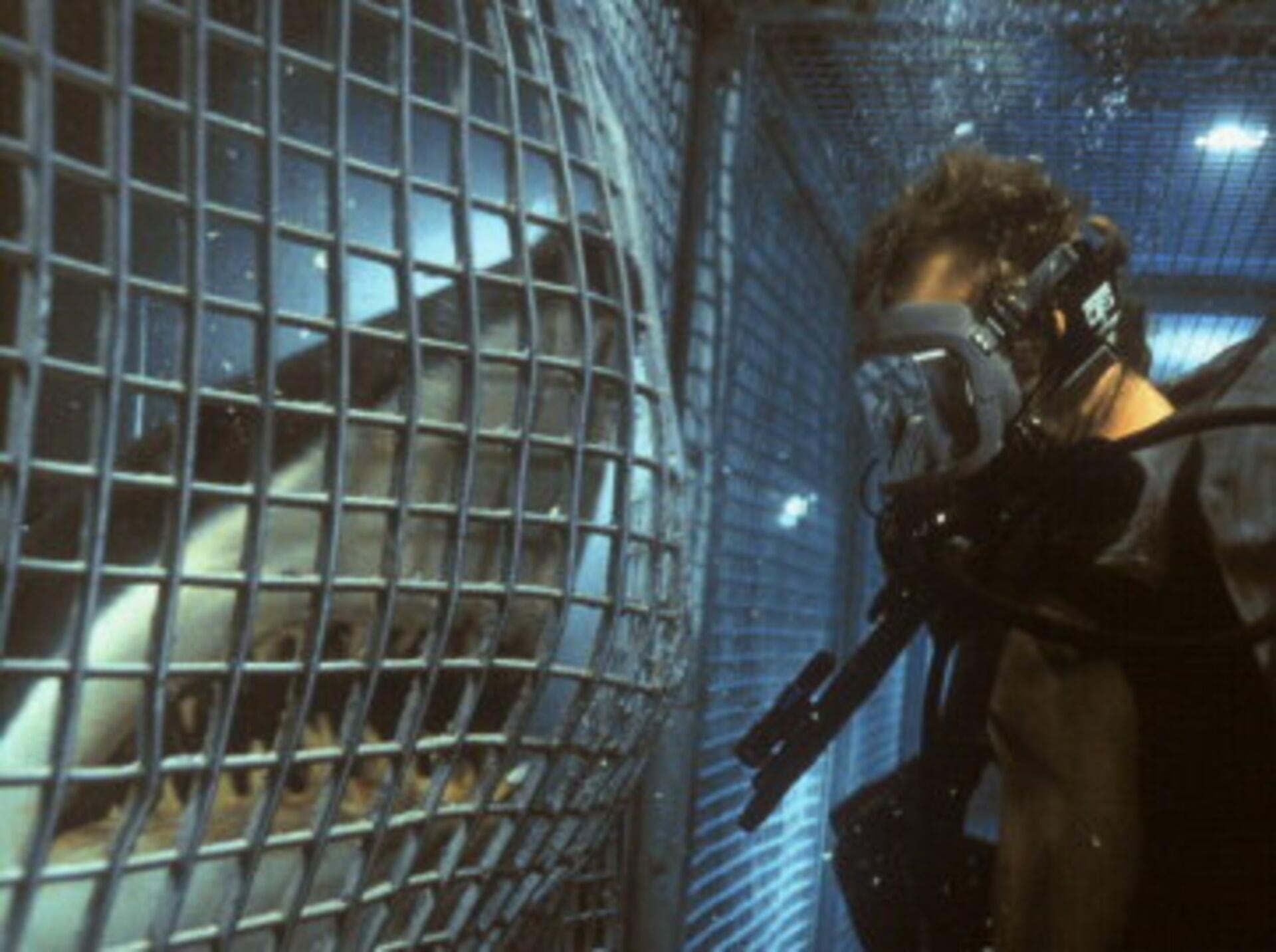 Deep Blue Sea - Image 6