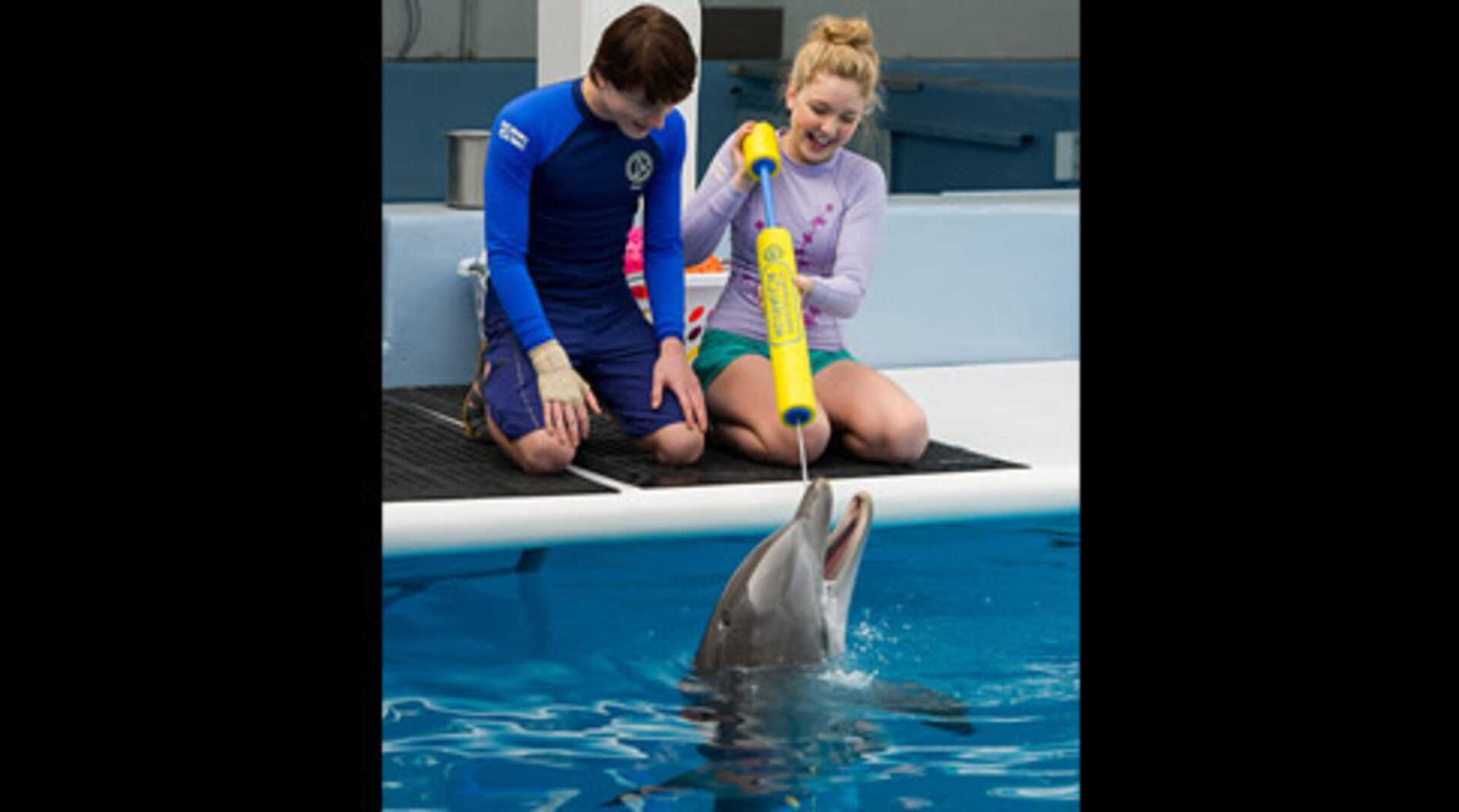 Dolphin Tale 2 - Image 1