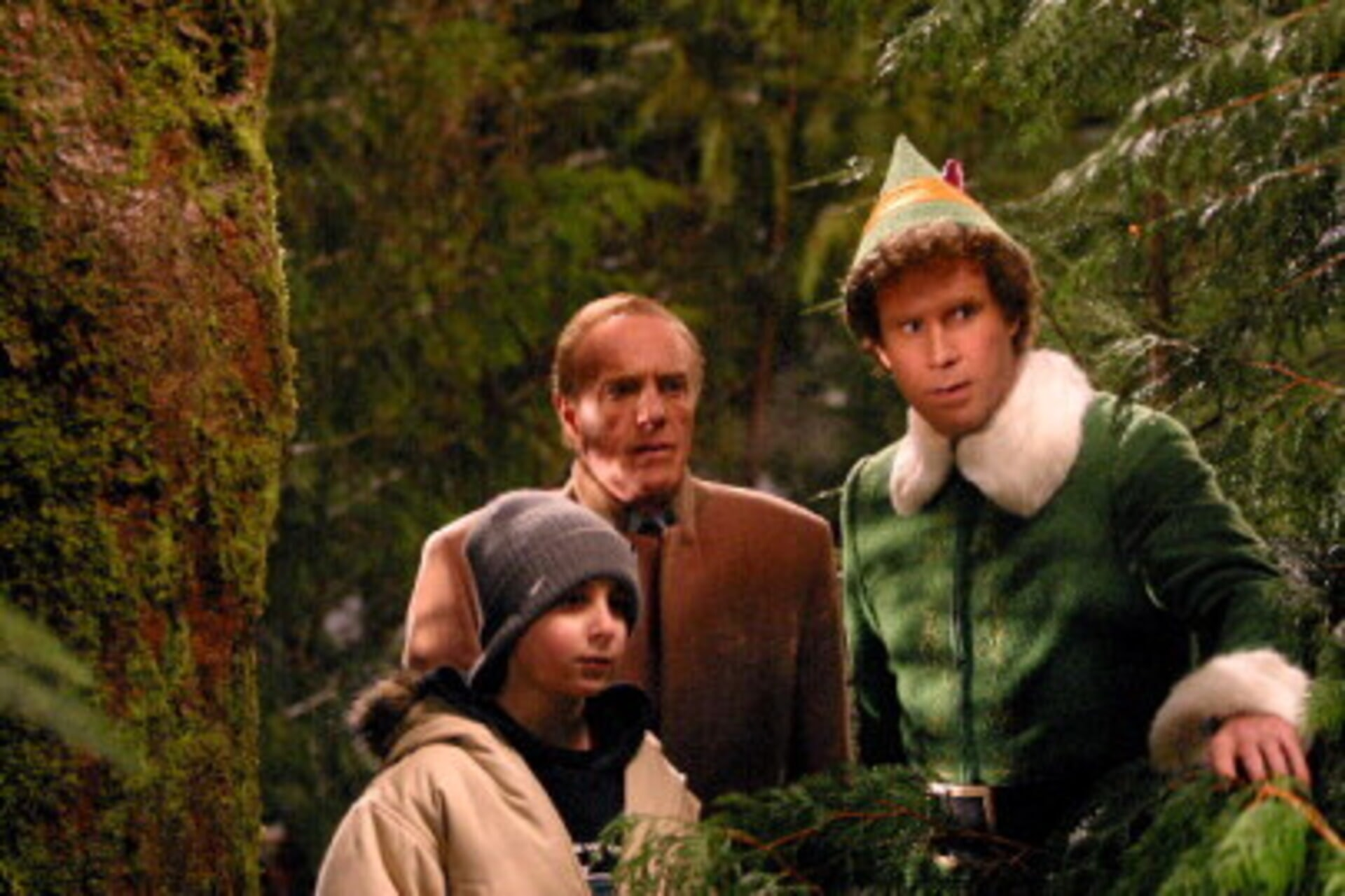 Elf - Image 13