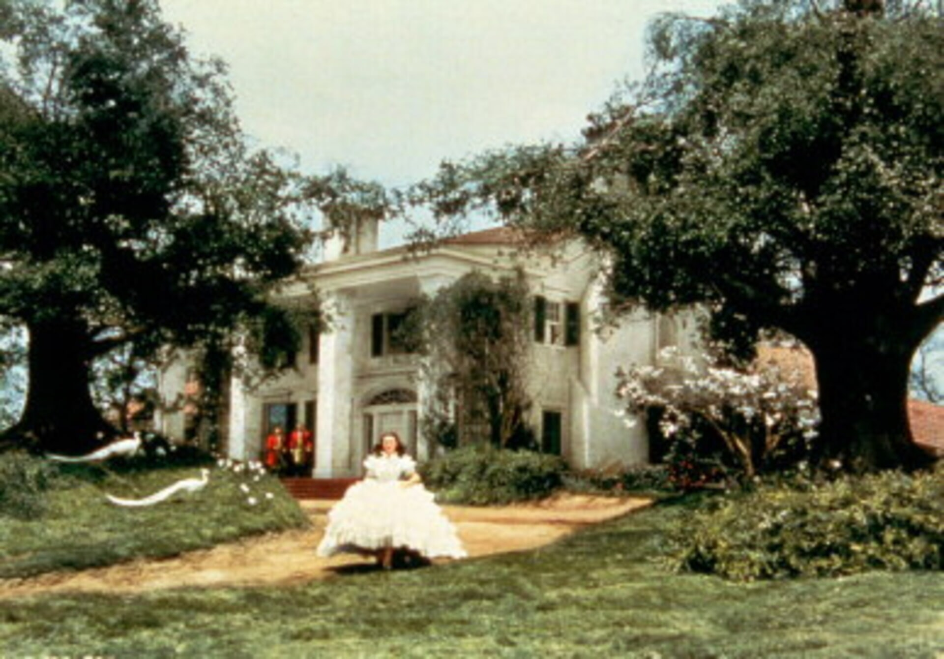 Gone with the Wind - Image 1