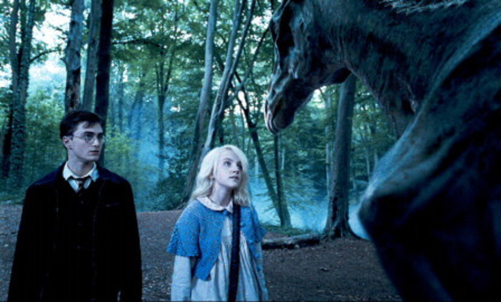 Harry Potter and the Order of the Phoenix - Image 9