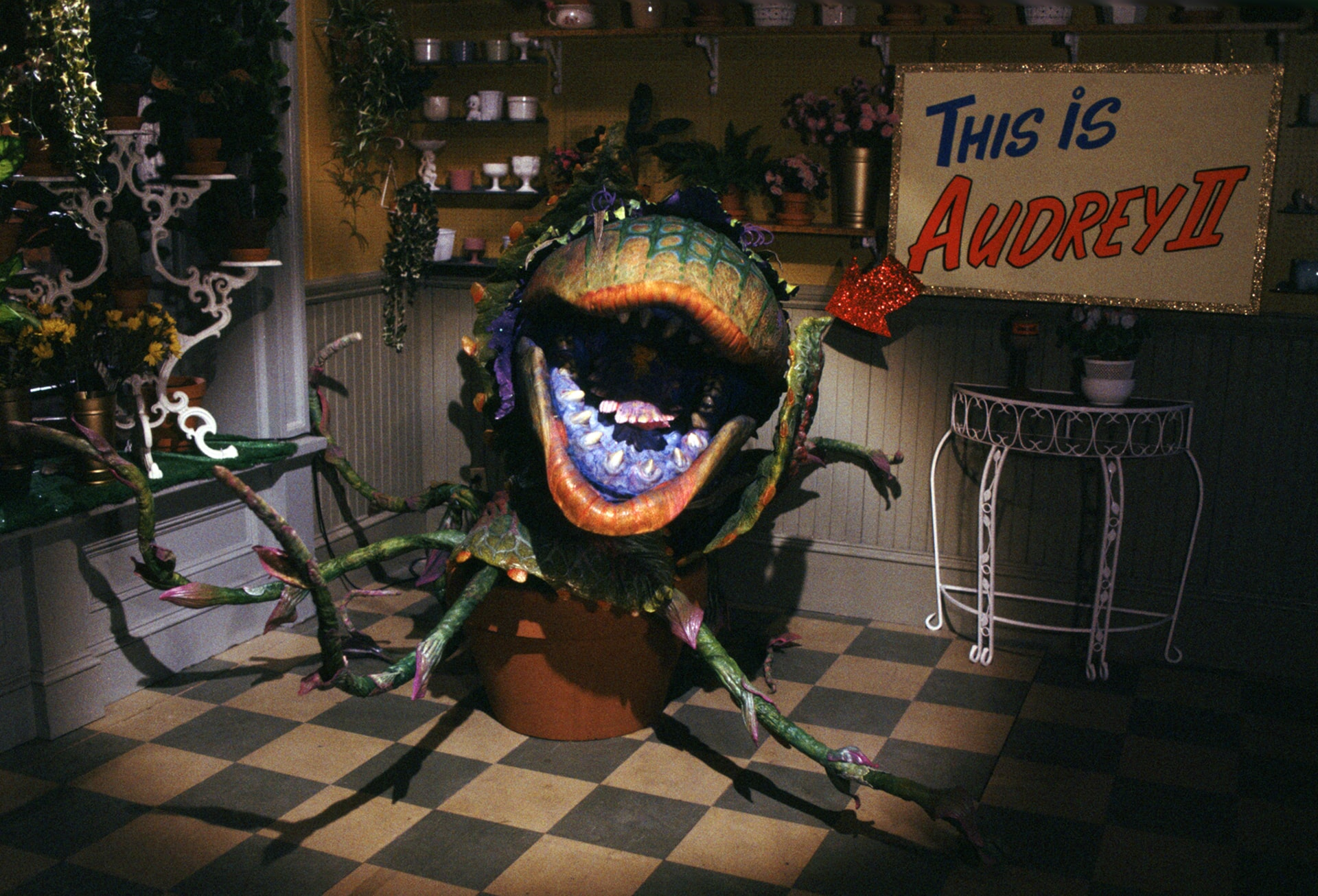 Little Shop of Horrors - Image 3