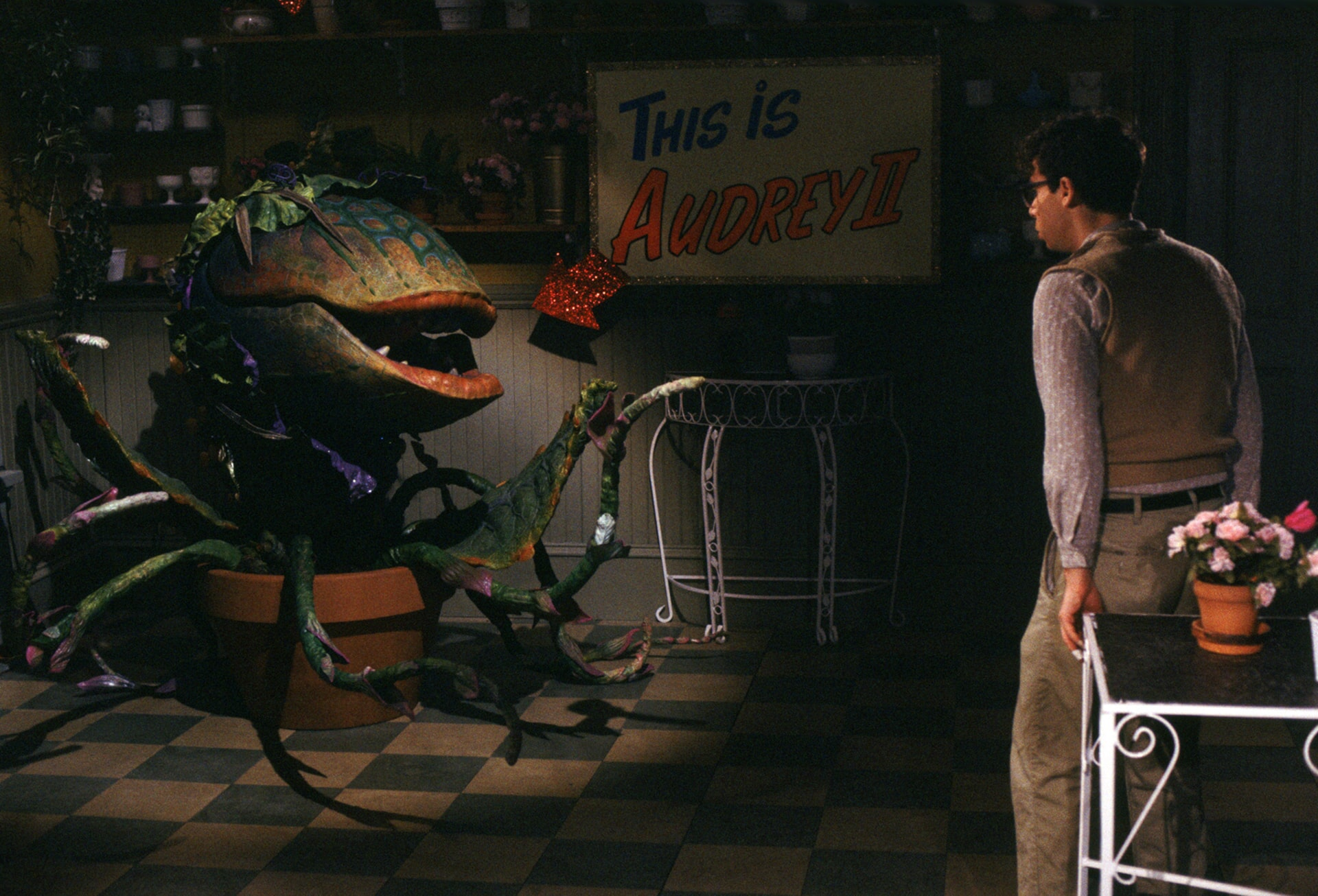 Little Shop of Horrors - Image 7