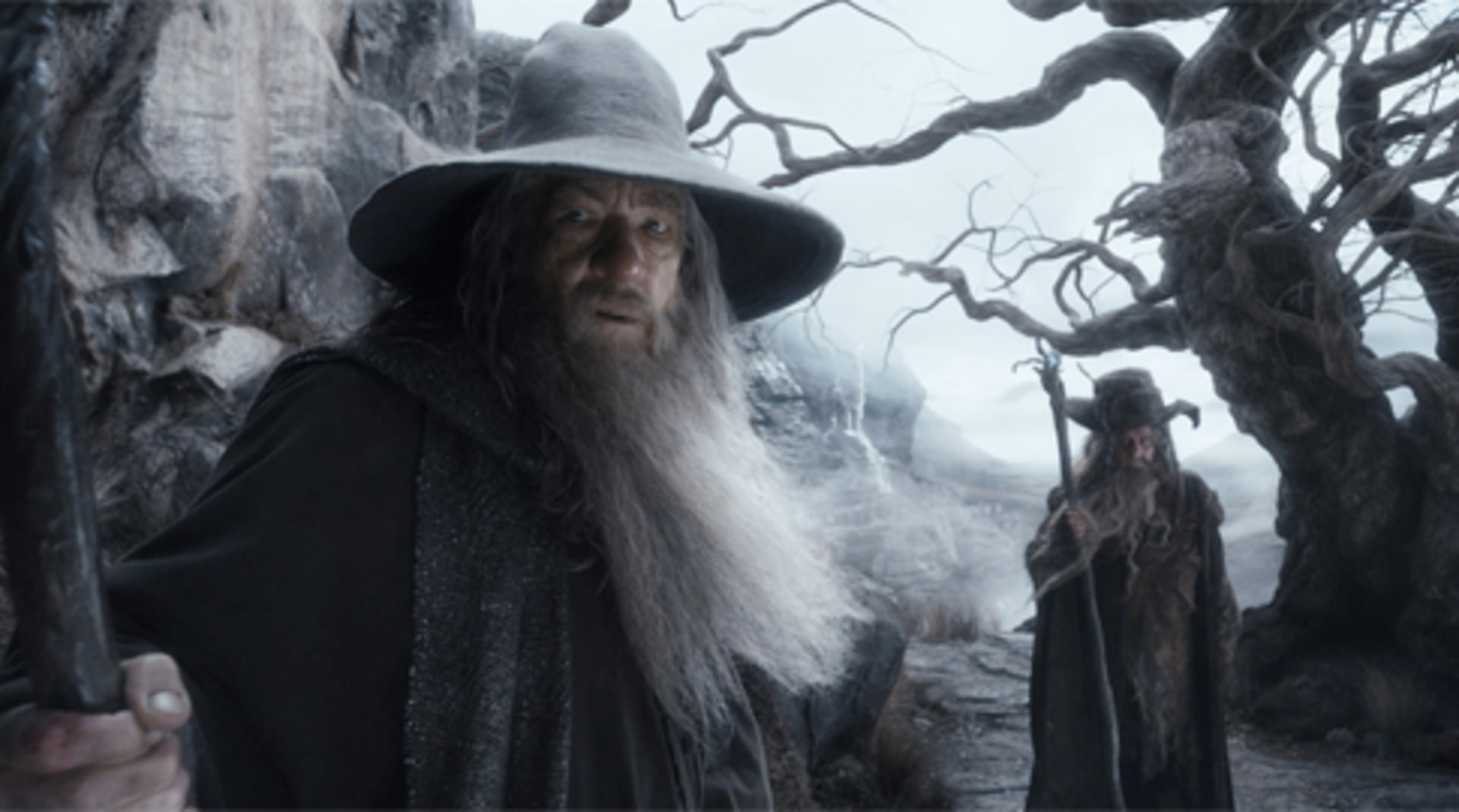 The Hobbit: The Desolation of Smaug - Image 16