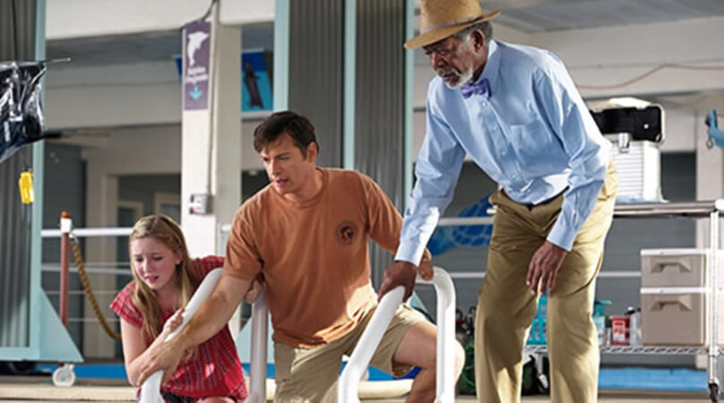 Dolphin Tale 2 - Image 5