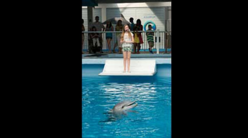 Dolphin Tale 2 - Image 6