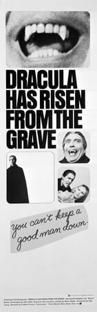 Dracula Has Risen from the Grave - Poster 11