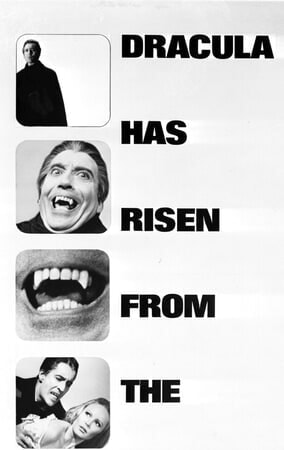 Dracula Has Risen from the Grave - Poster 5