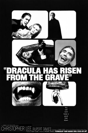 Dracula Has Risen from the Grave - Poster 8
