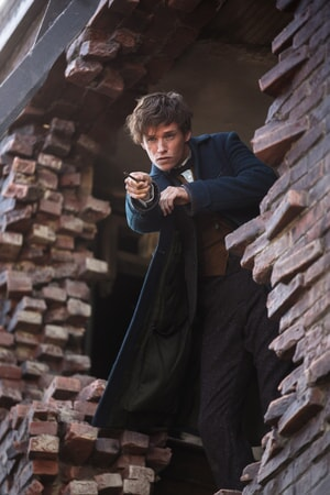 """EDDIE REDMAYNE as Newt Scamander and in Warner Bros. Pictures' fantasy adventure """"FANTASTIC BEASTS AND WHERE TO FIND THEM,"""""""