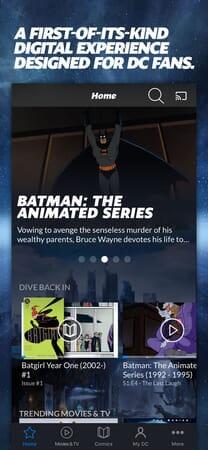 DC Universe - Image 2