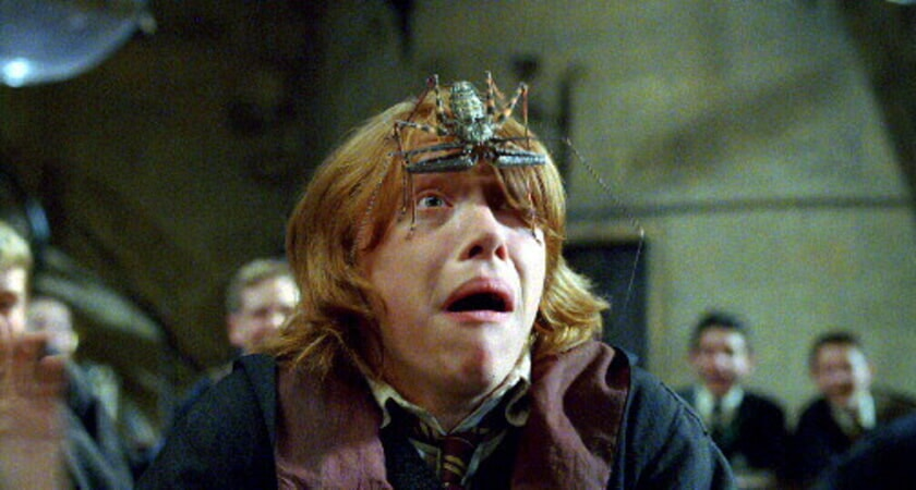 Harry Potter and the Goblet of Fire - Image 18