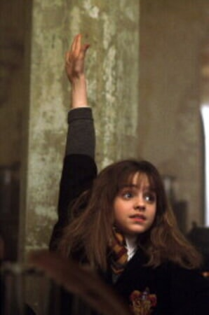 Harry Potter and the Sorcerer's Stone - Image 10