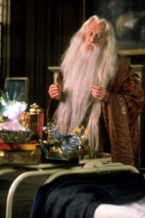 Harry Potter and the Sorcerer's Stone - Image 11