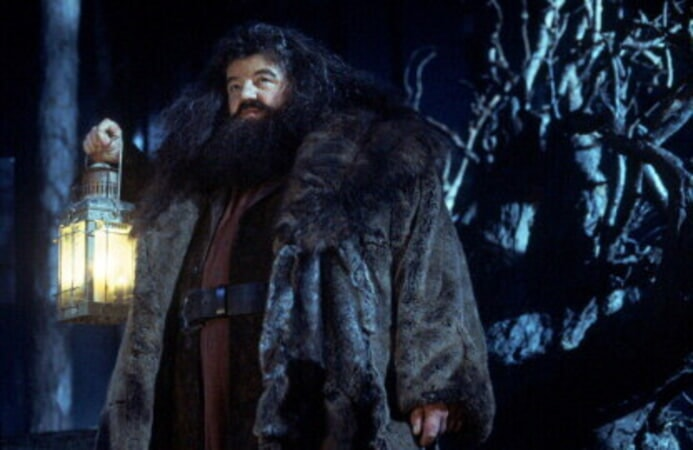 Harry Potter and the Sorcerer's Stone - Image 19