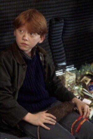 Harry Potter and the Sorcerer's Stone - Image 4