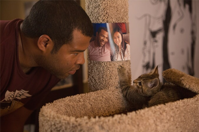 ORDAN PEELE as Rell looking at Keanu the kitten in his cat tree
