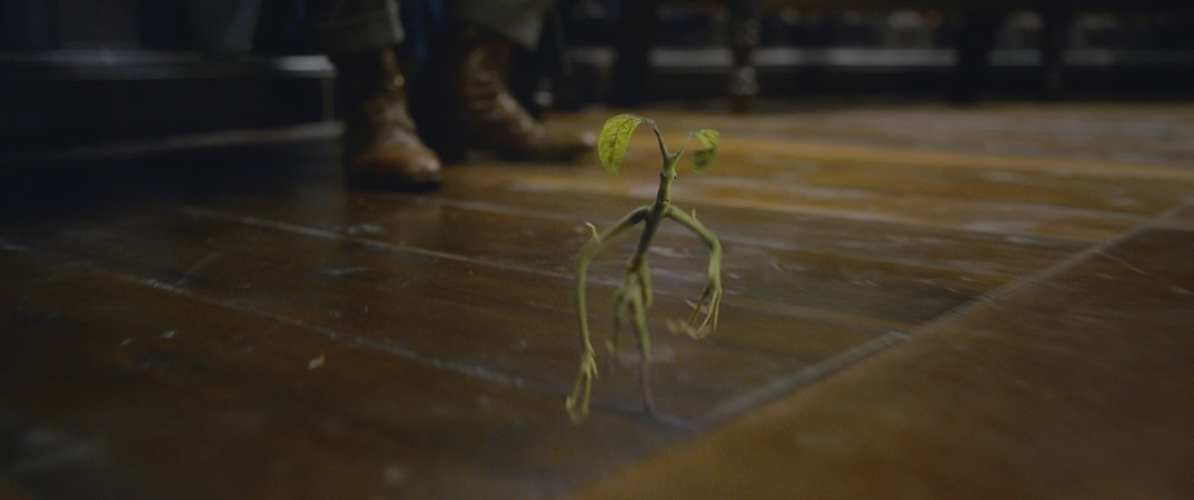 """The bowtruckle PICKETT in a scene from Warner Bros. Pictures' fantasy adventure """"FANTASTIC BEASTS: THE CRIMES OF GRINDELWALD,"""" a Warner Bros. Pictures release."""