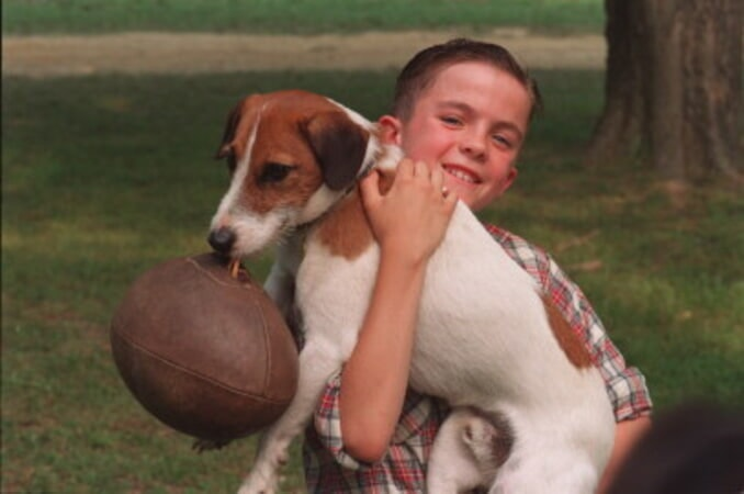 My Dog Skip - Image 1