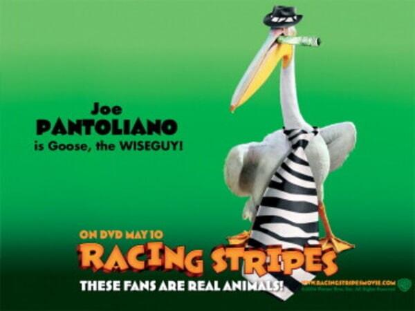 Racing Stripes - Image 1