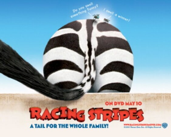 Racing Stripes - Image 17