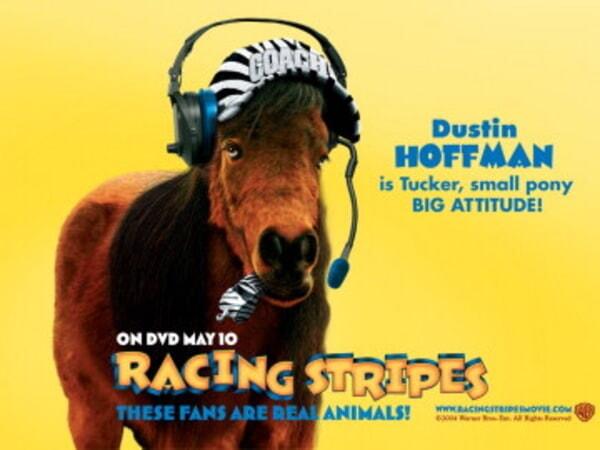 Racing Stripes - Image 20