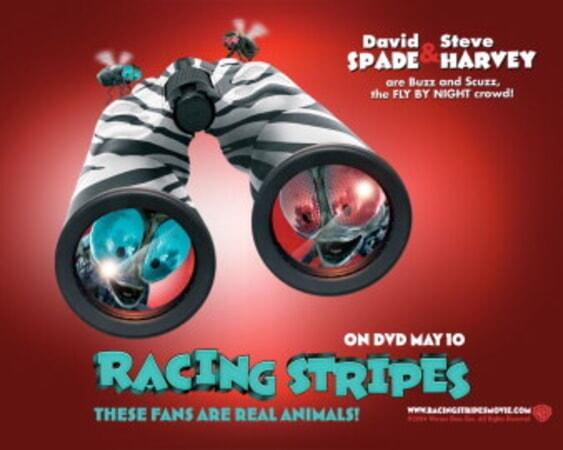 Racing Stripes - Image 22