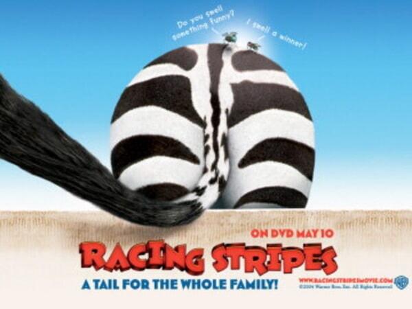 Racing Stripes - Image 34
