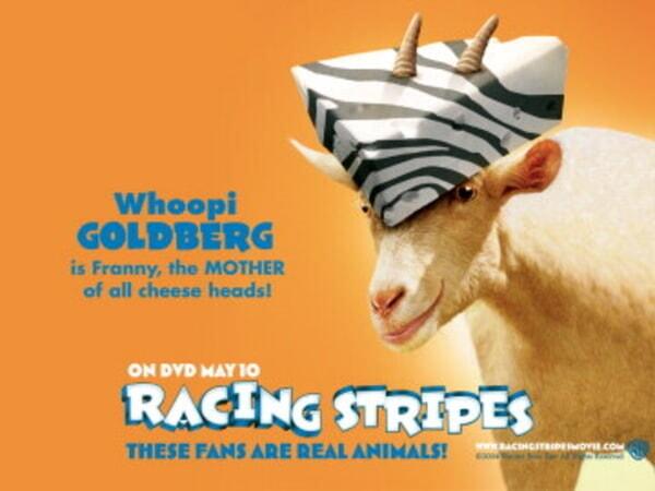 Racing Stripes - Image 38