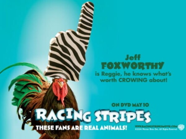 Racing Stripes - Image 53