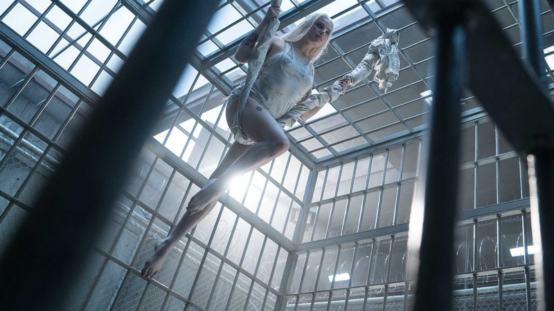 Harley Quinn balancing on a sheet in her cell