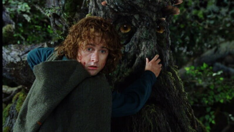 The Lord of the Rings: The Two Towers - Image 43