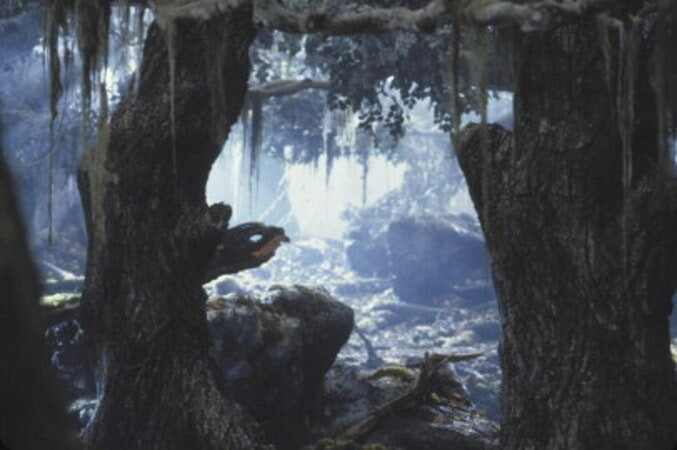 The Lord of the Rings: The Two Towers - Image 71
