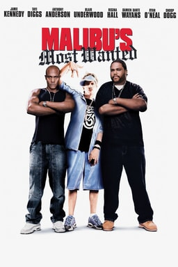 Malibus Most Wanted keyart